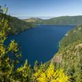Lake Crescent and the Strait of Juan de Fuca from the Mount Storm King Trail.- Mount Storm King Trail