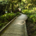 Short boardwalk between campsites at Lyre River Campground.- Lyre River Campground