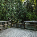 Fishing platform at Lyre River Campground.- Lyre River Campground