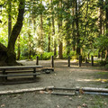 Typical campsite at Lyre River Campground.- Lyre River Campground