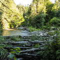 Lyre River at Lyre River Campground.- Lyre River Campground