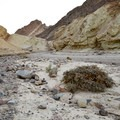The terrain has been eroded and shaped by floods.- Golden Canyon