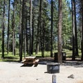 Typical campsite at Donner Memorial State Park Campground.- Donner Memorial State Park Campground