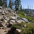 The Mount Judah Trail Loop begins and ends on the Pacific Crest Trail.- Mount Judah Loop