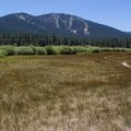 Martis Creek Trail.- Martis Creek Trail