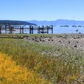 Tahoe SRA Campground.- Tahoe State Recreation Area Campground