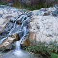 Smaller falls along the trail to Darwin Falls.- Darwin Falls