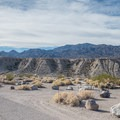 The sites are large and spacious.- Mesquite Spring Campground