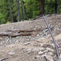 Rail tracks leading out of the Auburn Mine.- High Ridge Trail