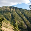 Avalanche chutes dissect the north-facing forested hillsides at the head of Lake Creek.- High Ridge Trail