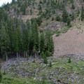 Avalanche trimline and a huge pile of debris at the bottom of the canyon.- North Fork of the Big Wood - East Fork of the North Fork