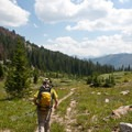 The lower Broad Canyon Trail crosses through roughly 2 miles of forest before opening into mid-elevation alpine meadows.- Broad Canyon: Betty, Goat + Baptie Lakes and the Surprise Valley Divide