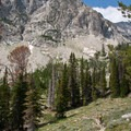 Eventually the trail climbs out of the lower elevation grass and sage hillsides.- Broad Canyon: Betty, Goat + Baptie Lakes and the Surprise Valley Divide