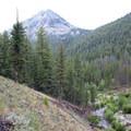 The trail eventually climbs above Fall Creek into the trees.- Fall Creek Canyon Hike