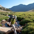 Beautiful creeks meander through high alpine meadows.- Fall Creek - Left Fork Canyon