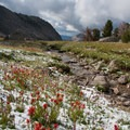 An afternoon thunderstorm leaves its mark in August.- Fall Creek - Surprise Valley, Broad Canyon Divide