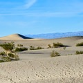 Mesquite Flat Sand Dunes, Death Valley National Park.- Mesquite Flat Sand Dunes