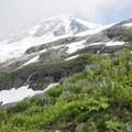 View of Mount Baker (10,781') and Roosevelt Glacier.- Mount Baker via Coleman Glacier