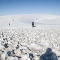 The return descent from Mount Baker's summit.- Mount Baker via Coleman Glacier