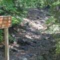 Trail access for the Pacific Crest Trail and elsewhere leaves from the campground.- Wild Plum Campground