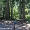 Wild Plum Campground. - Wild Plum Campground