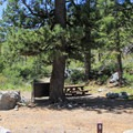 Sardine Lake Campground.- Sardine Lake Campground