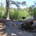 Picnic area at Sand Pond.- Sardine Lake Campground