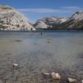 Tenaya Lake.- Tenaya Lake