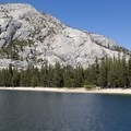 Beach on the east shore.- Tenaya Lake Trail