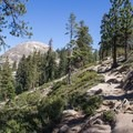 Trail to Sentinel Dome.- Sentinel Dome