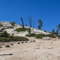 Switchbacks up to the summit.- Sentinel Dome