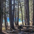 Picnic area on the north shore.- Tenaya Lake