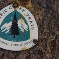 The loop shares a brief section with the Pacific Crest Trail and the John Muir Trail.- Lembert Dome Loop