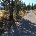 Gravel trail leading to Soda Springs from Lembert Dome/Stables area parking area.- Soda Springs