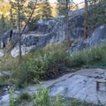 Old Pedro, Mono Hot Springs.- Mono Hot Springs