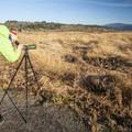 Looking east over Steigerwald National Wildlife Refuge.- Steigerwald Lake National Wildlife Refuge