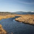 View east from the Steigerwald Lake Overlook.- Steigerwald Lake National Wildlife Refuge