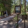 Zumwalt Meadow Trailhead.- Zumwalt Meadow Loop