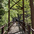 The trail to the meadow crosses this suspension bridge.  - Zumwalt Meadow Loop