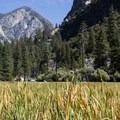 Zumwalt Meadow in Kings Canyon National Park.- Zumwalt Meadow Loop