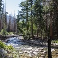 The River Trail follows the South Fork of the Kings River.- River Trail Hike, South Fork of the Kings River
