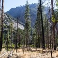 Looking toward the Roaring River Gorge where the River Trail ends.- River Trail Hike, South Fork of the Kings River