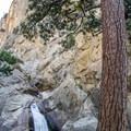 Roaring River Falls.- Roaring River Falls
