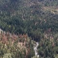 South Fork Kings River.- Cedar Grove Overlook