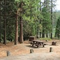Typical campsite at Hume Lake Campground.- Hume Lake Campground