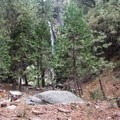 Grizzly Falls.- Grizzly Falls