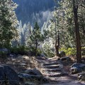 Early morning on the Tokopah Falls Trail.- Tokopah Valley Trail