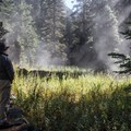 Frost melts and steam rises along the Tokopah Falls Trail.- Tokopah Valley Trail