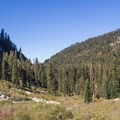 Looking down the valley.- Tokopah Valley Trail