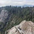 Tree tops of the Giant Forest.- Moro Rock